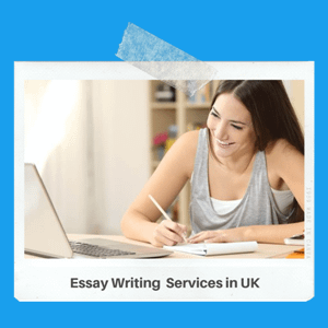 Academic essay structure introduction